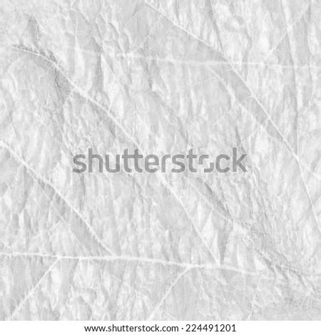 white leaf texture - stock photo
