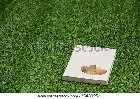 White leather book with gold hearts lying on the grass