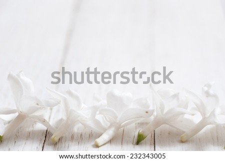 white lilac flower on bright wooden table background