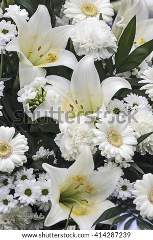 White lily and gerbera daisy