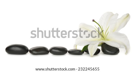 White lily and stones isolated on white background - stock photo