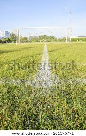 White line of soccer - stock photo