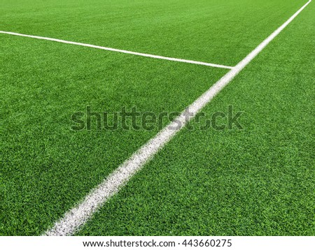 White line on grass green background