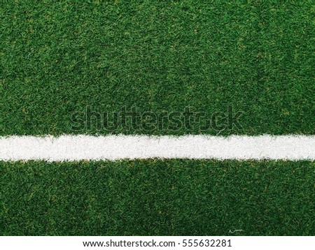 White line on green grass