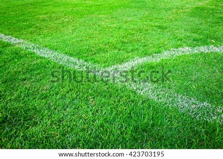 white line on green grass texture background - stock photo