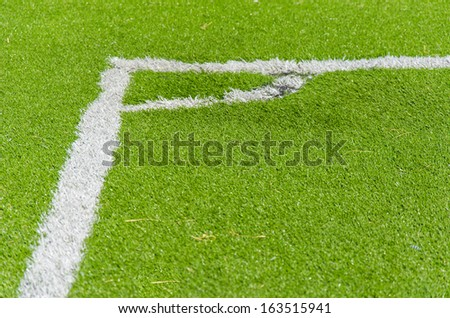white lines in green grass field in the soccer field