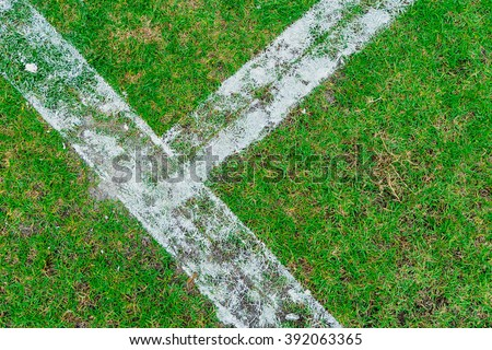 White Lines of a Soccer Field for sport background