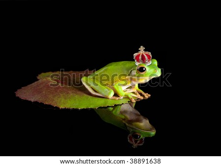 White-lipped tree frog prince with golden crown - stock photo