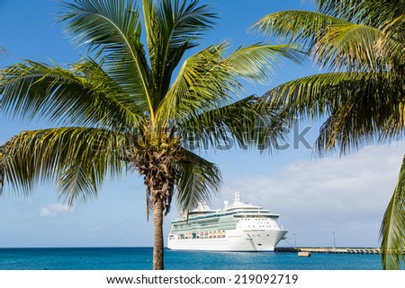 White Luxury cruise ship in blue water beyond palm trees - stock photo
