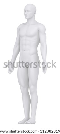 White male isolated in anatomical position dorsal view clipping path - stock photo