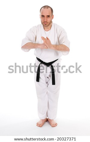 White man doing martial arts on isolated background - stock photo