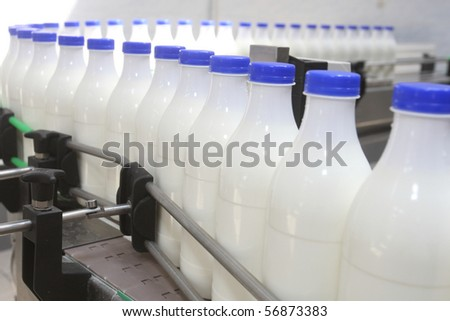 White milk bottles with blue cover at conveyor - stock photo