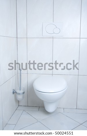 White, modern and clean toilet with brush.