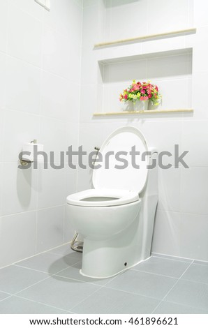 White modern flush toilet bowl - bathroom interior