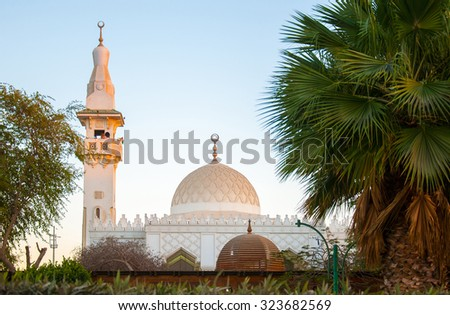 White mosque in the green palms in Egypt Hurghada