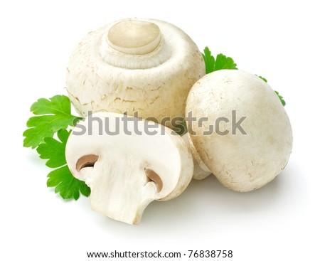 white mushroom - stock photo