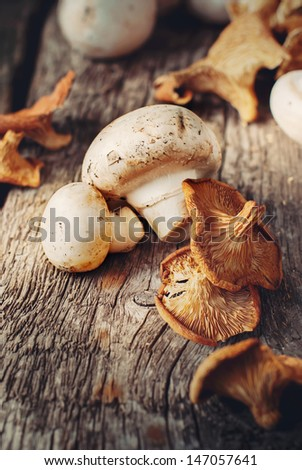White Mushrooms and Dried Chanterelle, toned - stock photo