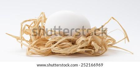 White Natural Egg in Nest - stock photo