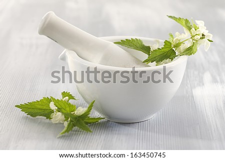 White nettle in ceramic mortar-plant medicinal  - stock photo