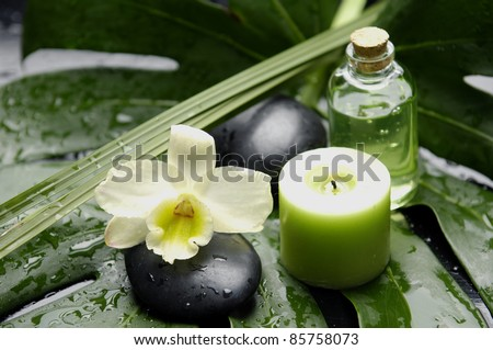 white orchid and bottle of massage oil and candle on green wet leaf - stock photo