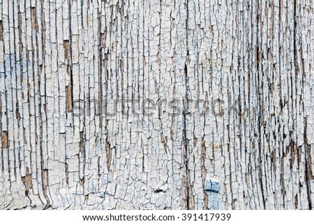 White painted old grunge wooden texture. Background collection. - stock photo