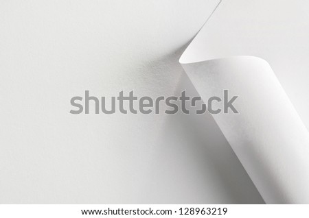 White paper, partially rolled up, close-up - stock photo