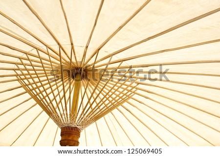 White paper umbrella bamboo stalks - stock photo
