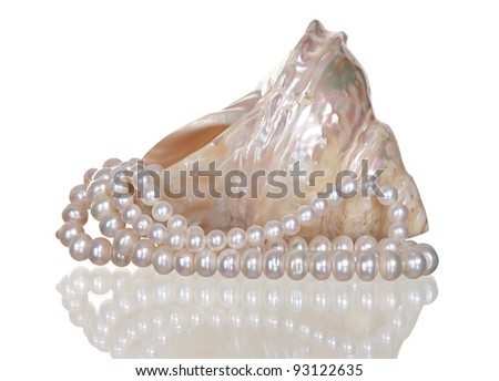 white pearl necklace in a seashell on a white background. - stock photo