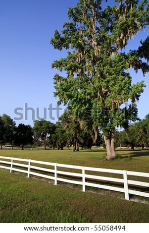 White Picket Fence on a Country Horse Farm - stock photo