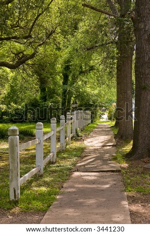 White picket fence on a tree lined street