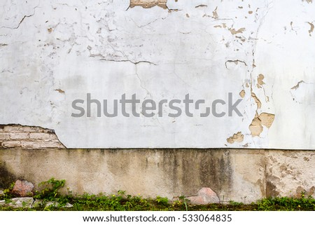 White plaster wall with green grass