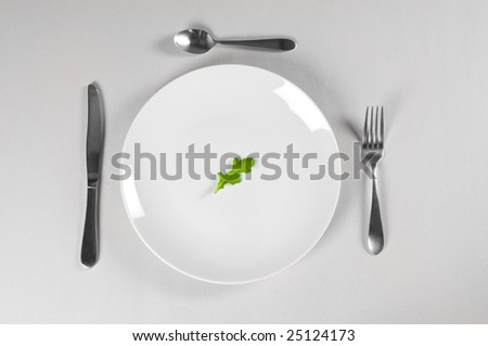 White Plate and Diet with nutrition and hunger - stock photo
