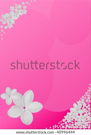White Plumeria and pink background Design