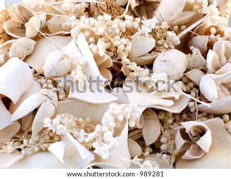 White potpourri - stock photo