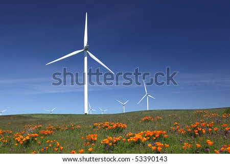 White power generating wind turbines, windmills against  blue sky, orange wildflowers, california poppies, on agricultural green pastures - stock photo