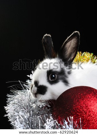 white rabbit and colored christmas toy composition