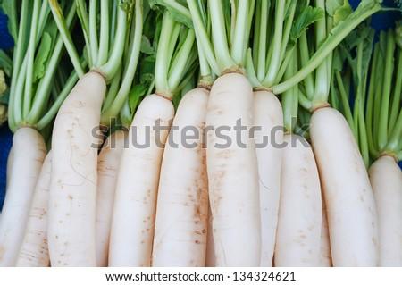 white radish . - stock photo