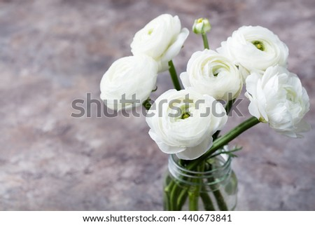 White ranunculus flowers in a glass vase Grey background Copy space - stock photo