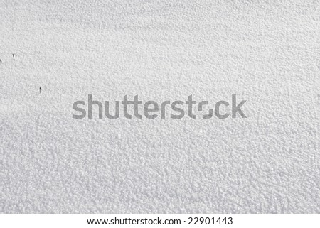 White real snow background