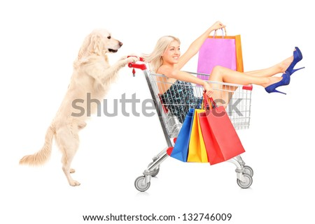 White retriever dog pushing a woman with shopping bags in a cart isolated on white background - stock photo