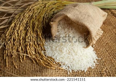 white rice in burlap sack with rice grain - stock photo