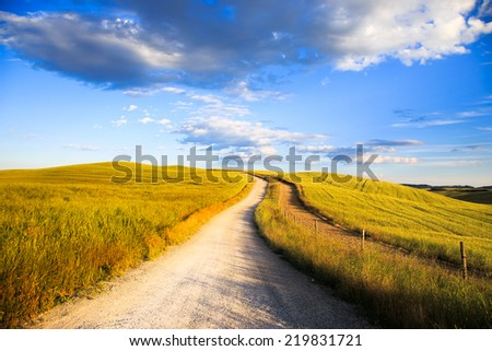 White road on rolling hill and wheat field in a rural landscape. Val d Orcia land near Siena, Tuscany, Italy, Europe. - stock photo