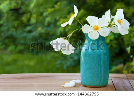White Rock Rose Blossoms in a Crazed Blue Vase on a Table Outdoors with Green Bushes and Grass in the Background with Copy Space or Room for your Text - stock photo