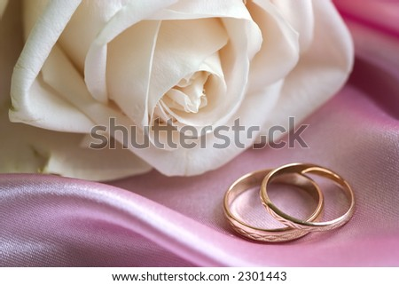 White rose and wedding rings on pink background - stock photo
