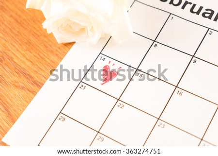 white rose on the calendar with the date of February 14 Valentine's day - soft focus effect picture