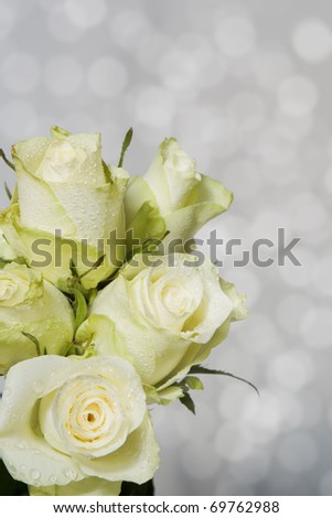 White roses for you.