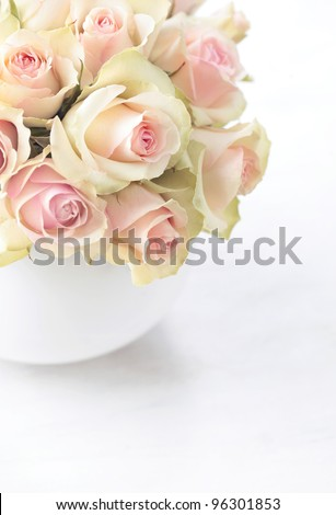 White roses  in a vase on white background - stock photo