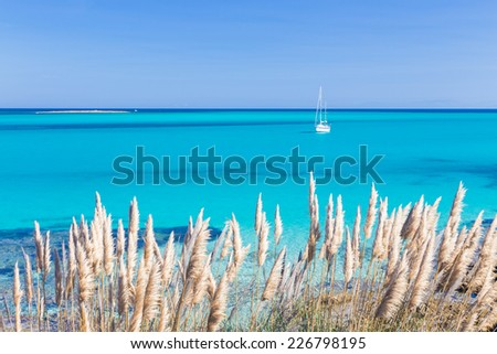White sail boat at the beautiful turquoise blue mediterranean Pelosa beach near Stintino, Sardinia, Italy. - stock photo