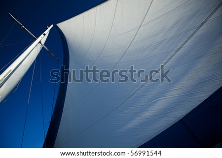 White sails - stock photo