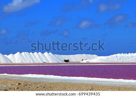 White salt hills on the tropical salt plantation. Salt farm under the blue sky with clouds. Pink water surface with sandy shore.